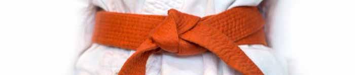 Orange belt grading